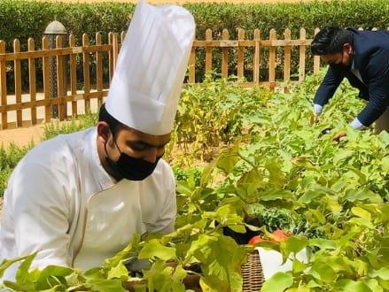 Sustainability Gets a Boost at Qasr Al Sarab Desert Resort by Anantara