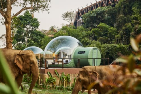 Anantara Ready to Welcome International Guests Back to Thailand With Unforgettable New Experiences