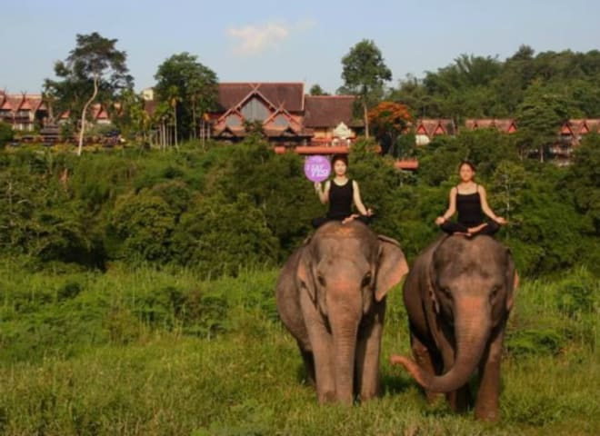 Anantara demonstrates its passion for wellbeing on Global Wellness Day