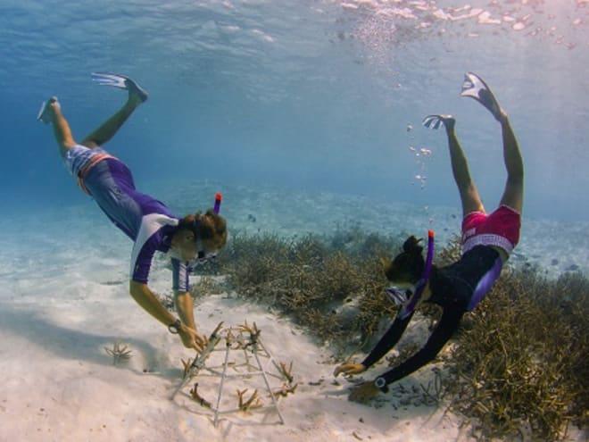 Initiators of Change: New Anantara Docuseries Showcases the Future of Sustainable Travel