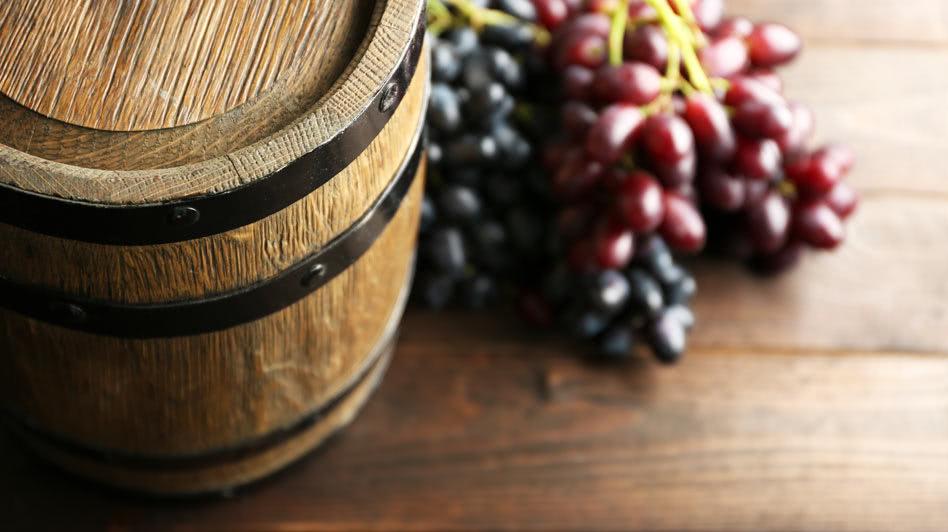 Wine Master Class in Salalah Oman
