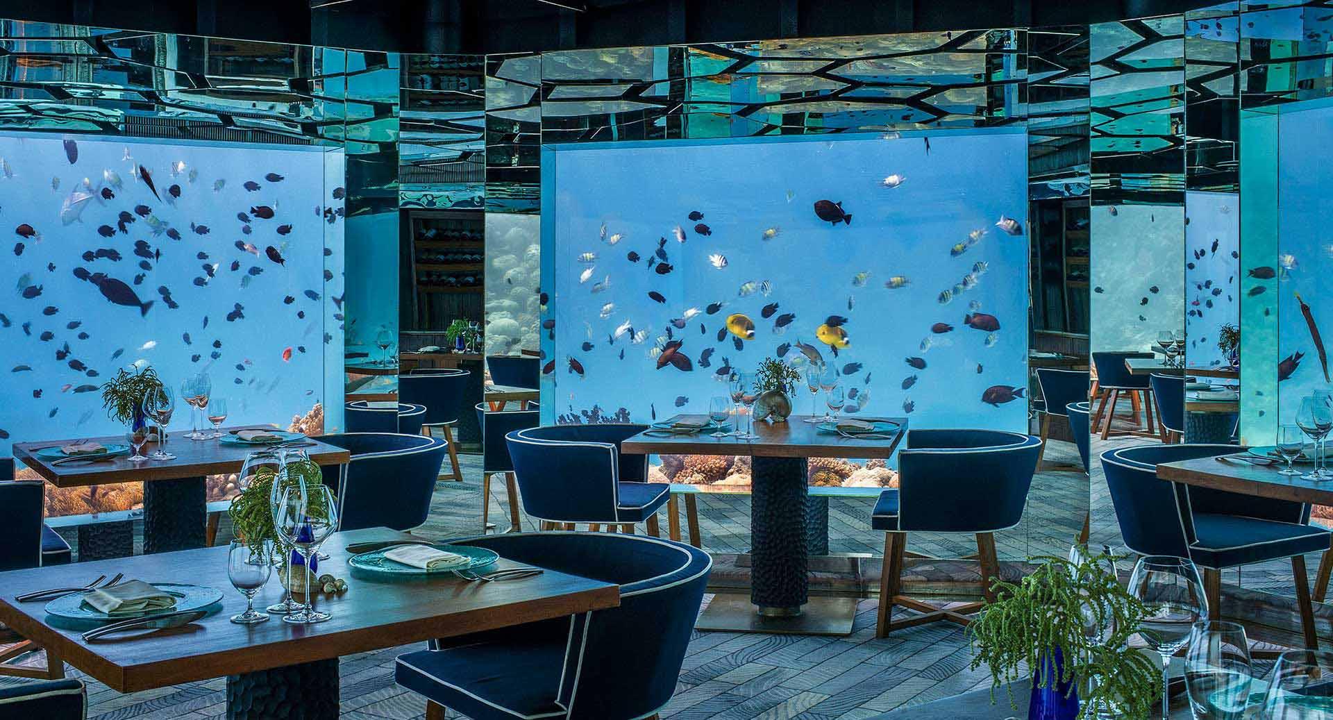 anantara kihavah underwater restaurant SEA