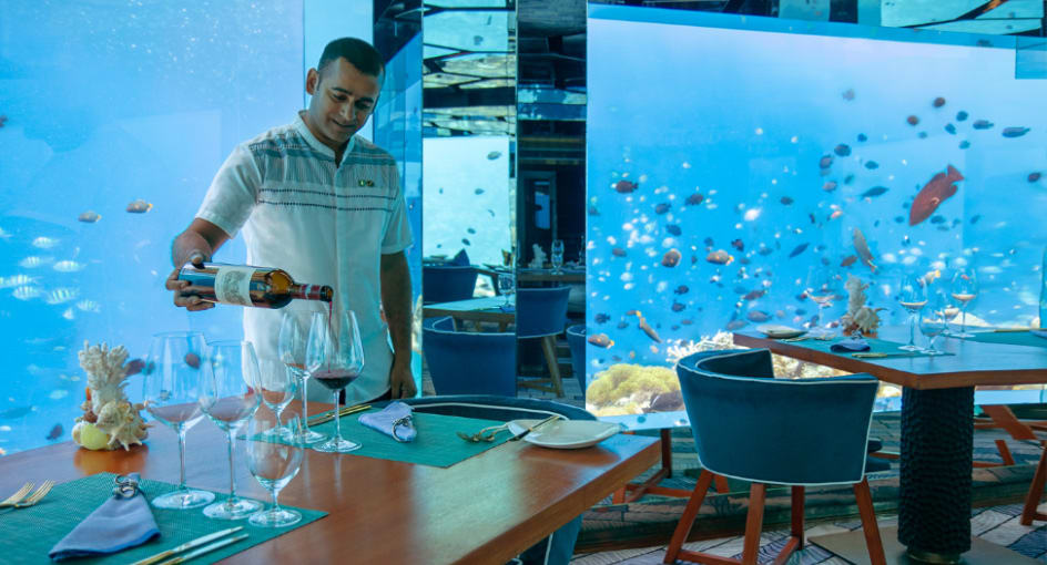 Wine Guru at Anantara Kihavah Maldives Underwater Restaurant