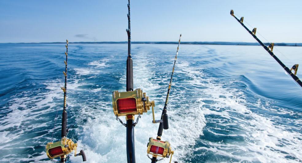 Fishing Trips in Doha