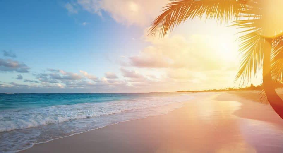 Beach Hotels Doha Day Pass Banana Island Resort