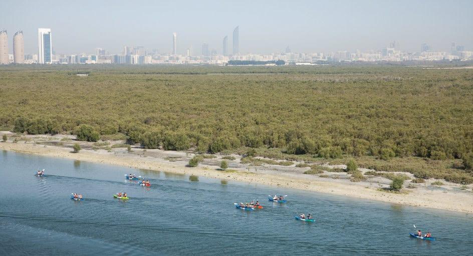 Kayaking Experience in Abu Dhabi