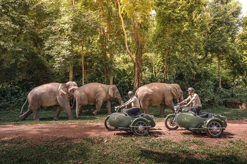 Hotel Transportation Gets a Royal Kickstart in Northern Thailand's Jungle