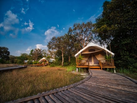 Cambodia's Cardamom Tented Camp: Conservation Efforts Take Off as Guests and Rangers Embrace Forest Guardianship