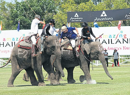 Anantara's King's Cup Elephant Polo Tournament 2016 Moves to Bangkok's Scenic Riverside