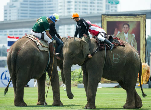 Anantara's King's Cup Elephant Polo Scoops Award for Sports CSR Initiative of the Year in the Asia 2016 SPIA Awards