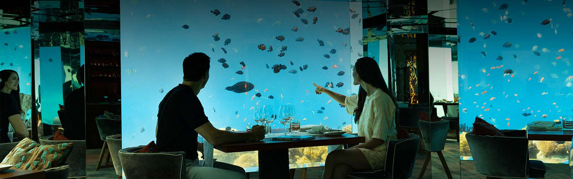 Underwater Restaurant In Maldives Sea Anantara Kihavah