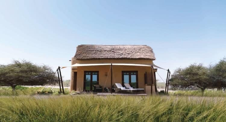 Sir Bani Yas Island - Abu Dhabi