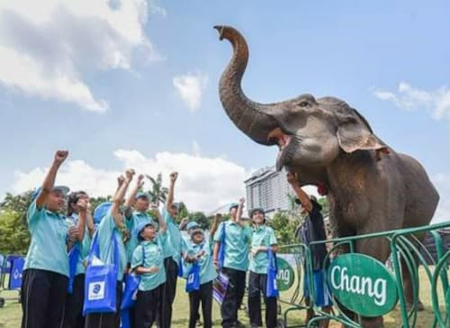 Anantara's King's Cup Elephant Polo Raises Millions For Thailand's Pachyderms
